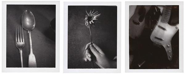 Patti Photography