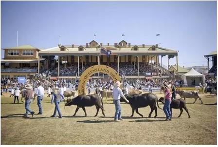 Ekka皇家博覽會是昆士蘭歷史最悠久、也最盛大的傳統農業節慶活動,已有138年歷史