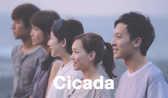 cicada-562x329
